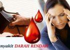Melia Propolis Mengatasi Penyakit Darah Rendah