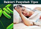 Pengobatan Ampuh Sembuhkan Penyakit Thypus/Tipes Dengan Melia Propolis
